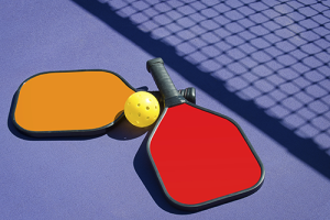 How Pickle-Ball® Came To Be